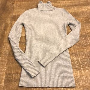 Express Fitted Turtle Neck Sweater